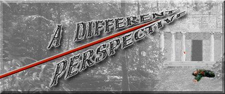 Link to 'A Different Perspective'